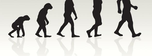 evolution-of-man-illustration-in-silhouette